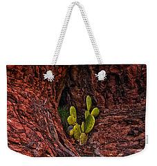 Cactus Dwelling Weekender Tote Bag