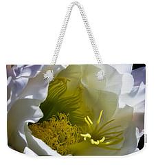 Cactus Interior Weekender Tote Bag