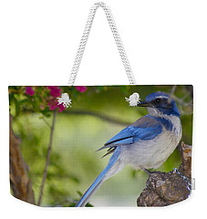 California  Scrub Jay Weekender Tote Bag