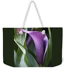 Weekender Tote Bag featuring the photograph Calla Lily In Purple Ombre by Rona Black