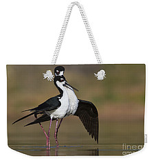 Weekender Tote Bag featuring the photograph Can I Have This Dance by Bryan Keil