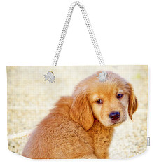Can I Play Too Weekender Tote Bag