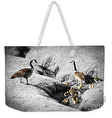 Canada Geese Family Weekender Tote Bag by Elena Elisseeva