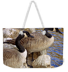 Weekender Tote Bag featuring the photograph Canada Geese by Joseph Skompski