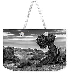 Canyon And Twisted Pine Weekender Tote Bag