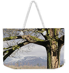Weekender Tote Bag featuring the photograph Capture The Moment by Tiffany Erdman