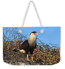 Weekender Tote Bag featuring the photograph Caracara In The Dunes by Debra Martz