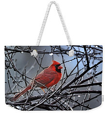 Weekender Tote Bag featuring the photograph Cardinal In The Rain   by Nava Thompson