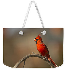 Weekender Tote Bag featuring the photograph Cardinal by Jerry Gammon