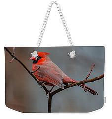 Cardinal Sing Weekender Tote Bag