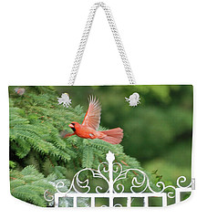 Weekender Tote Bag featuring the photograph Cardinal Time To Soar by Thomas Woolworth