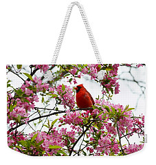 Cardinally Beautiful Weekender Tote Bag by Sonali Gangane