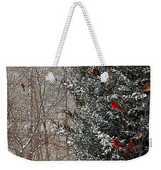 Cardinals In Winter 1 Square Weekender Tote Bag