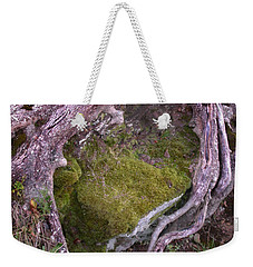 Caressing The Moss Weekender Tote Bag by Gary Slawsky
