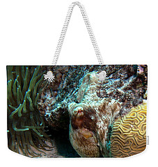 Caribbean Reef Octopus Next To Green Anemone Weekender Tote Bag by Amy McDaniel