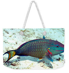 Caribbean Stoplight Parrot Fish In Rainbow Colors Weekender Tote Bag by Amy McDaniel
