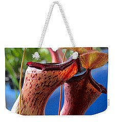 Carnivorous Pitcher Plants Weekender Tote Bag by Venetia Featherstone-Witty