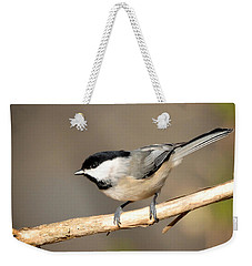 Carolina Chickadee  Weekender Tote Bag by Kerri Farley