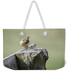 Carolina Wren Weekender Tote Bag by Heather Applegate