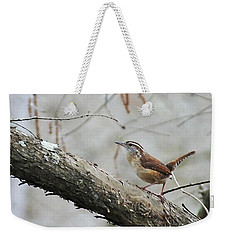Weekender Tote Bag featuring the photograph Carolina Wren Lake Martin Louisiana Swamp by Lizi Beard-Ward