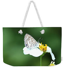 Weekender Tote Bag featuring the photograph Cassius Blue On Wildflower by Greg Allore