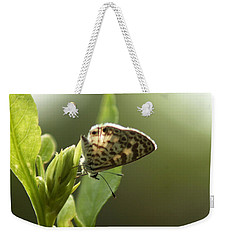 Cassius On Plumbago Weekender Tote Bag by Greg Allore