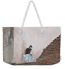 Weekender Tote Bag featuring the photograph Cat Above The Roman Ruins by Tiffany Erdman