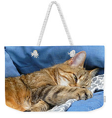 Weekender Tote Bag featuring the photograph Cat Nap by Lingfai Leung