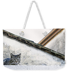 Weekender Tote Bag featuring the photograph Cat On A Roof by Brooke T Ryan