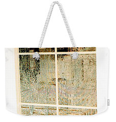 Weekender Tote Bag featuring the photograph Cat Perspective by Jacqueline McReynolds