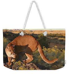 Cat Stretch Weekender Tote Bag
