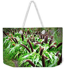 Cat Tail Plants Weekender Tote Bag