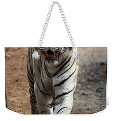 Cat Walk Weekender Tote Bag