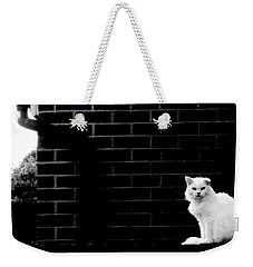 Cat With The Floppy Ear In Black And White Weekender Tote Bag