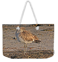 Weekender Tote Bag featuring the photograph Catching Some Zzzzzs by HH Photography of Florida