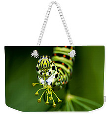 Caterpillar Of The Old World Swallowtail Weekender Tote Bag by Torbjorn Swenelius