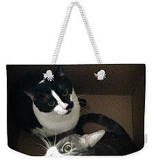 Cats In The Box Weekender Tote Bag