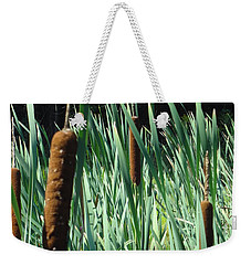 Cattails A Plenty Weekender Tote Bag by Michael Porchik