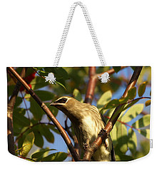 Weekender Tote Bag featuring the photograph Cedar Waxwing by James Peterson