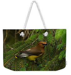 Weekender Tote Bag featuring the photograph Cedar Waxwing by Steven Clipperton