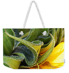 Weekender Tote Bag featuring the photograph Celebration Sunflower by Wendy Wilton