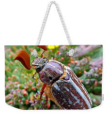 Chafer Beetle On Medusa Succulent 2 Weekender Tote Bag