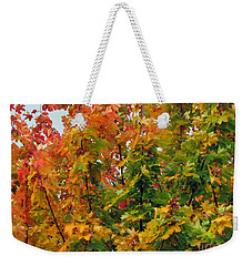 Weekender Tote Bag featuring the photograph Changing Times by Tikvah's Hope