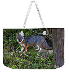 Channel Island Fox Weekender Tote Bag