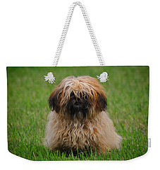 Weekender Tote Bag featuring the photograph Charlie by Greg Norrell