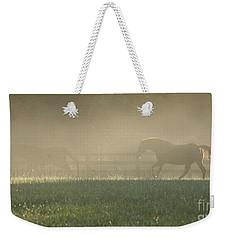 Weekender Tote Bag featuring the photograph Chasing A Phantom by Carol Lynn Coronios