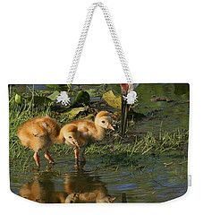 Checking On The Babies Weekender Tote Bag by Myrna Bradshaw