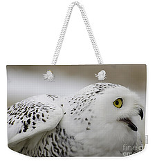Cheeky Snow Owl Weekender Tote Bag