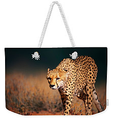 Cheetah Approaching From The Front Weekender Tote Bag by Johan Swanepoel