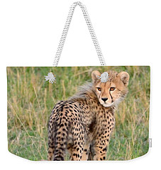 Cheetah Cub Looking Your Way Weekender Tote Bag